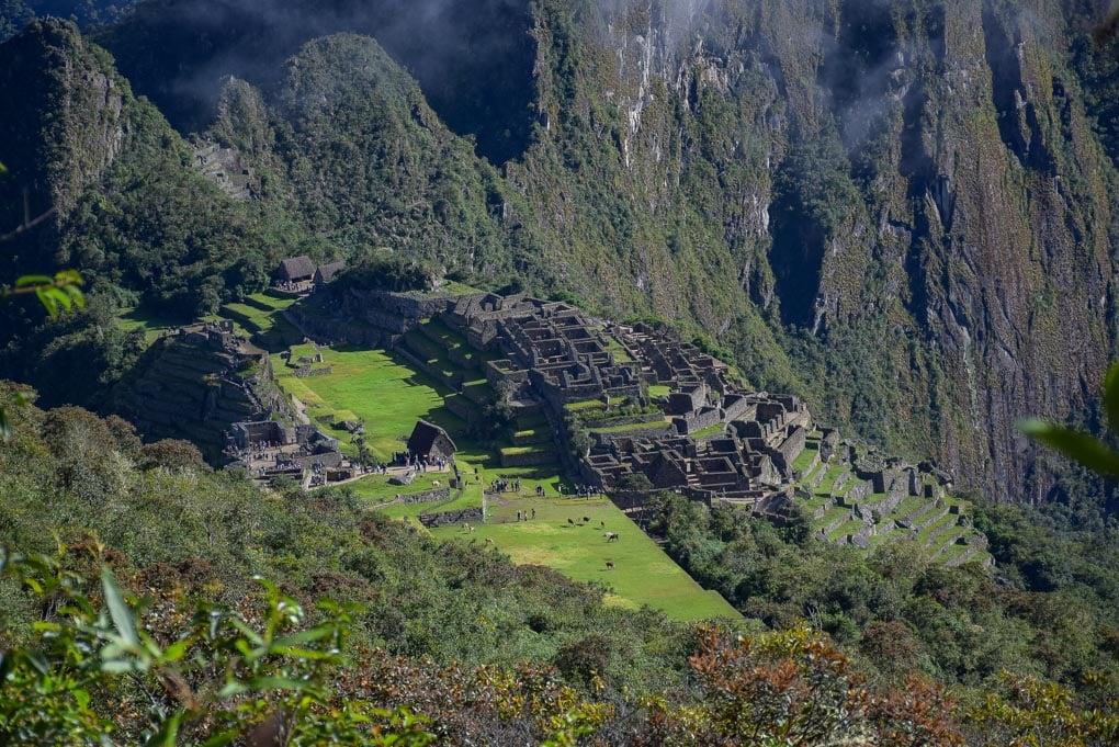 A zoomed in shot of Machu Picchu from Machu Picchu Mountain