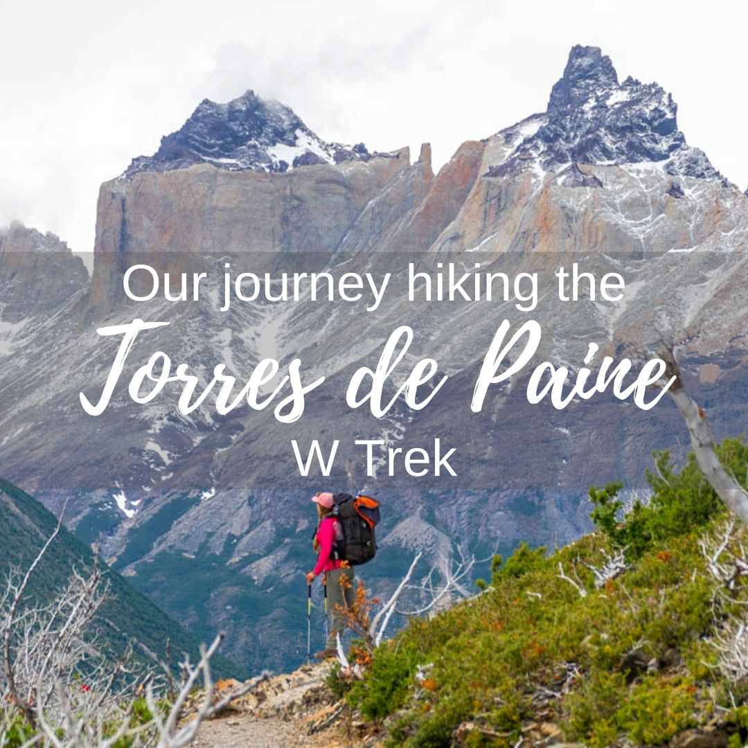 Bailey on the Torres del Paine W Trek