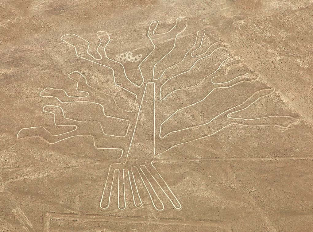 The Nazca Lines on a tour from Lima