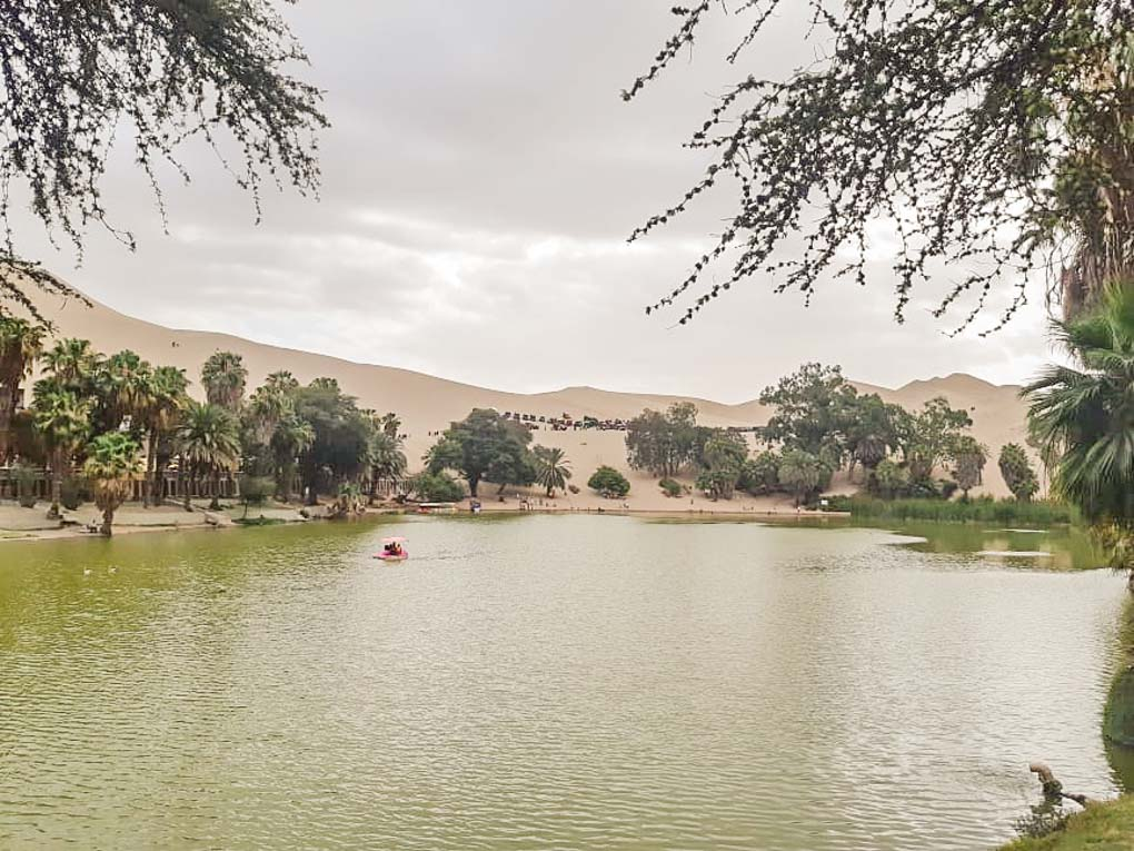A view of a person paddle boating on the lake in Huacachina, Peru