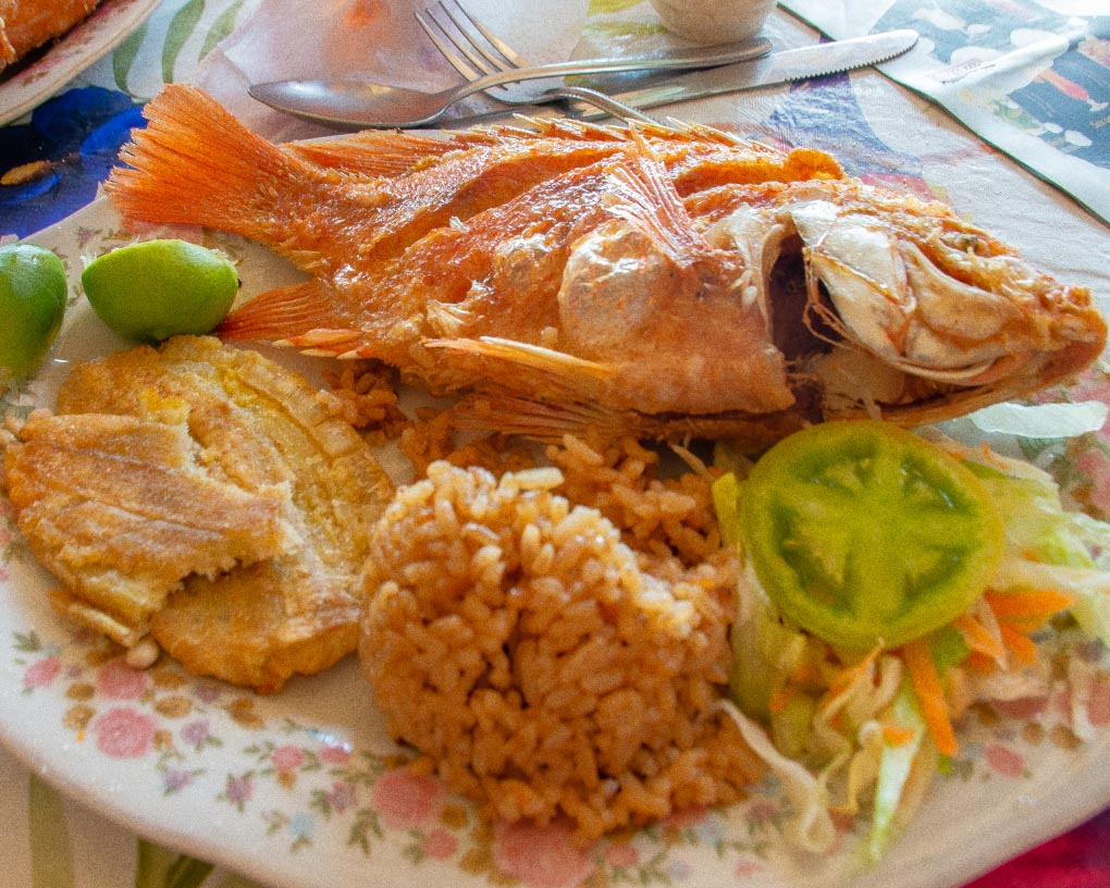 Fried fish, plantains and coconut rice from our food tour in Santa Marta