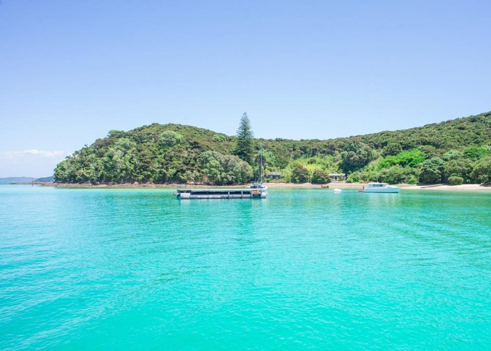Views of a calm bay in the Bay of Islands, New Zealand
