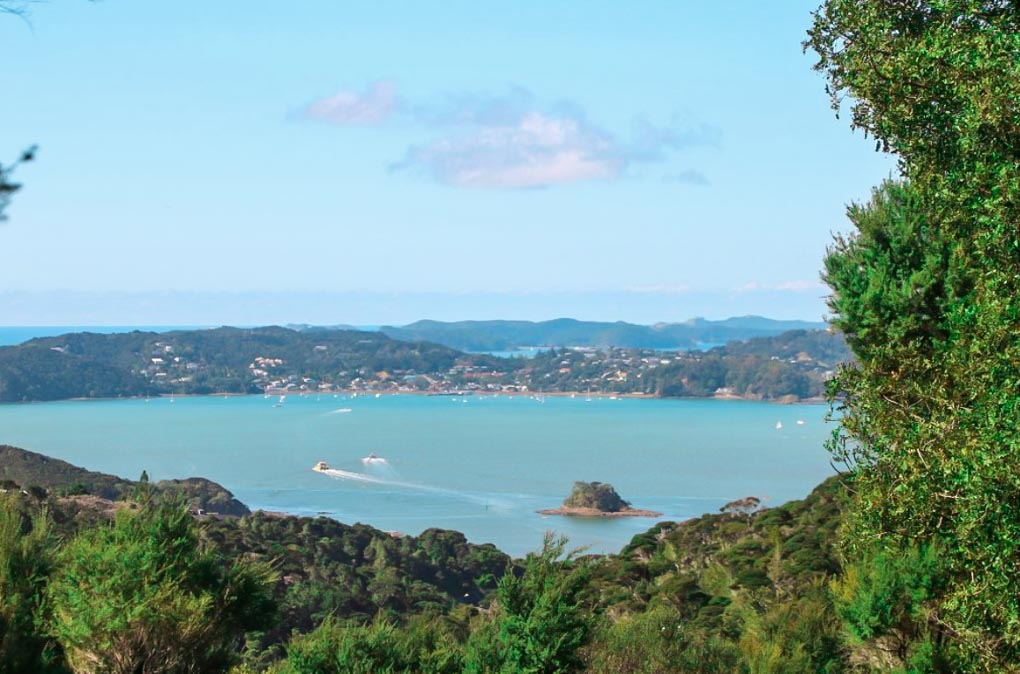 Opua Forest Lookout, Bay of Islands