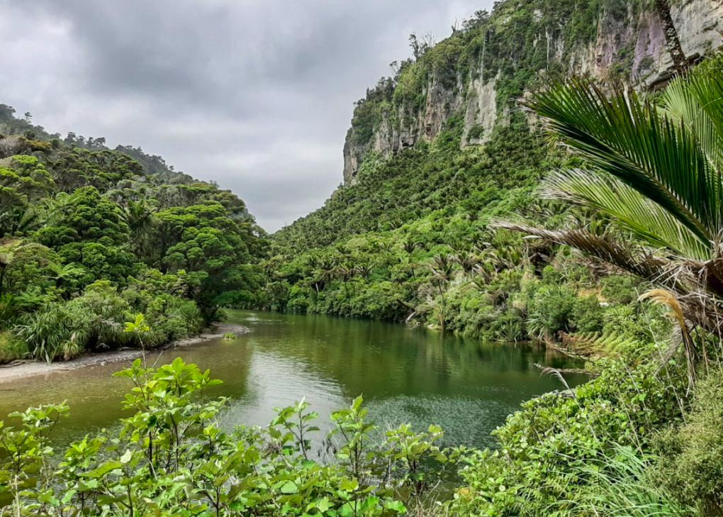 Views from the Pororari River Track, New Zealand