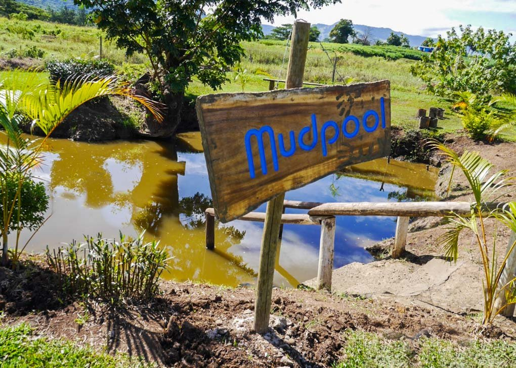 the mud pools in Nadi, Fiji