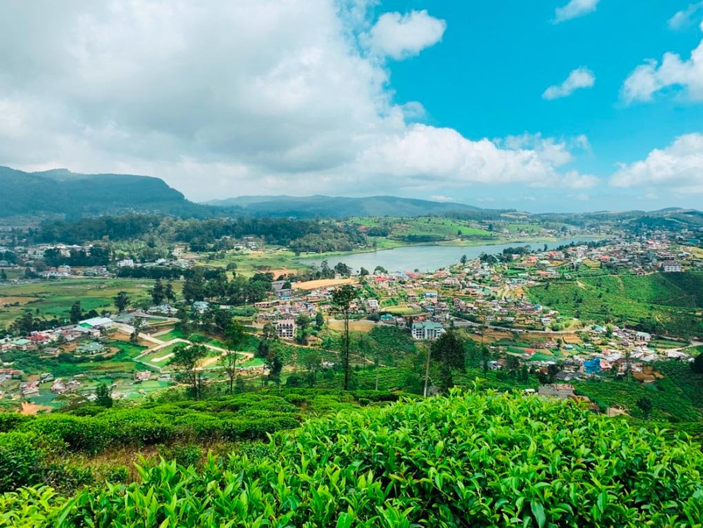 The views from Single Tree Hill, Nuwara Eliyaa
