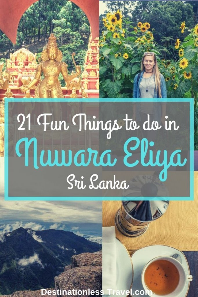 things to do in nuwara eliya pinterest image