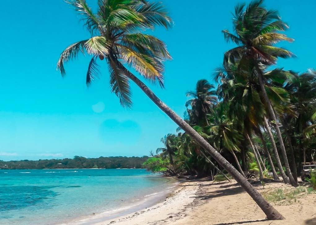 Drago Beach, Bocas del Toro