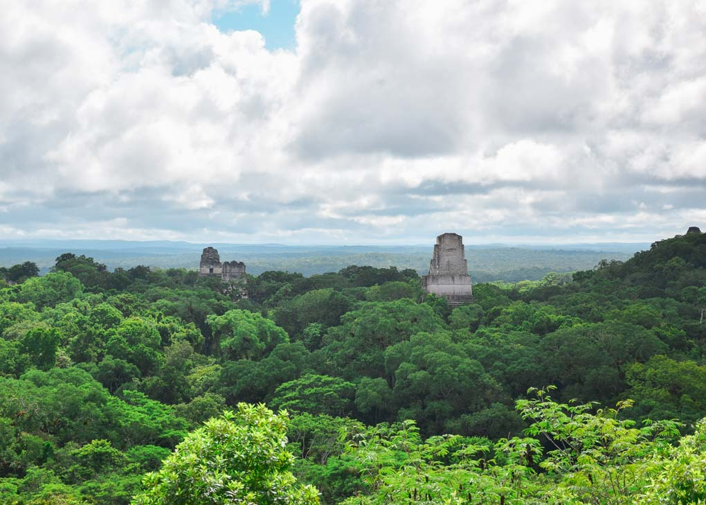 The ruins of Tikal stick above the treetop canonpy