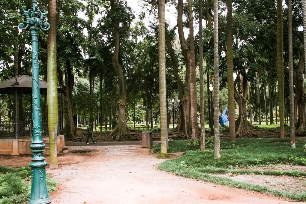 Jardim da Luz or Luz Garden in Sao Paulo