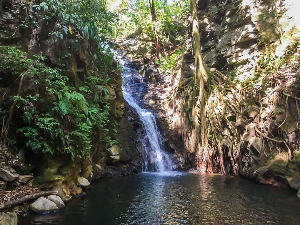 Monteverde Waterfall