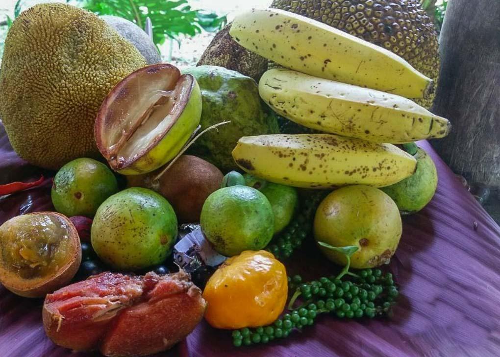 fruit that you'll find at Finca La Isla