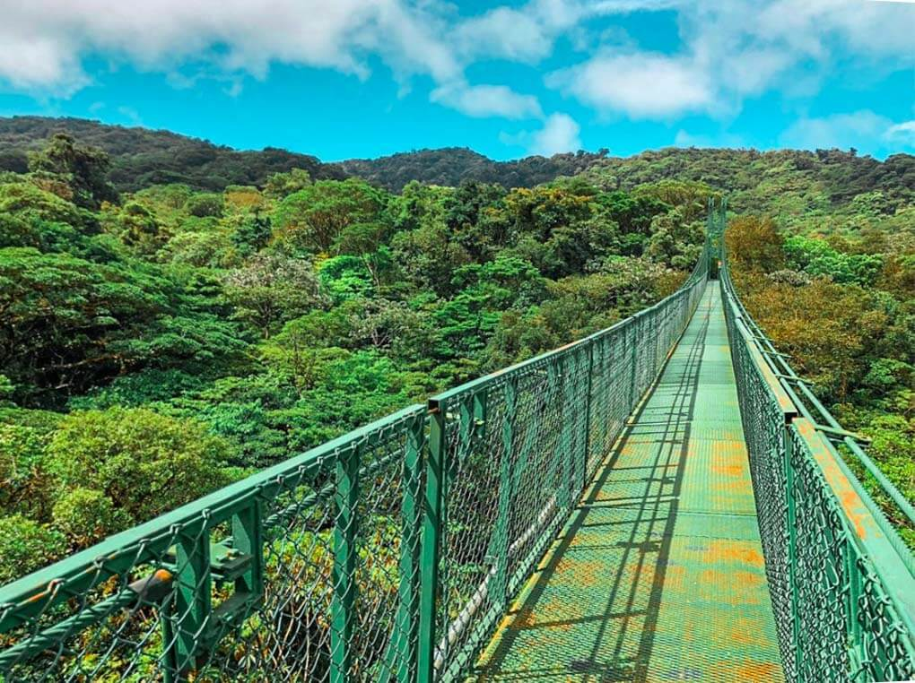 One of the hanging bridges in Selvatura Park, Monteverde