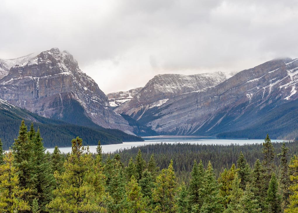Views of the mountains on the Icefields parkway