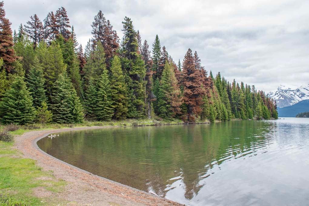 Views of Maligne lake on the Marry Shaffer Loop on Maligne Lake in Jasper National Park