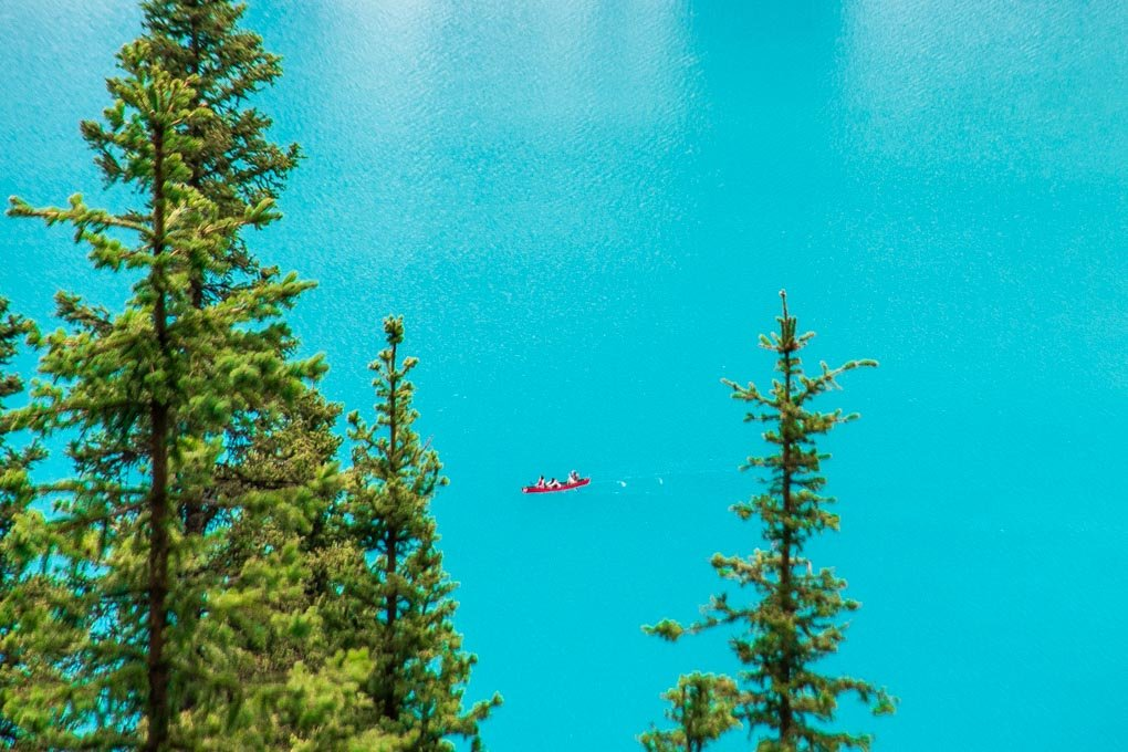 Looking down at a canoe on Lake Louise from the Lake Agnes Tea House Hike