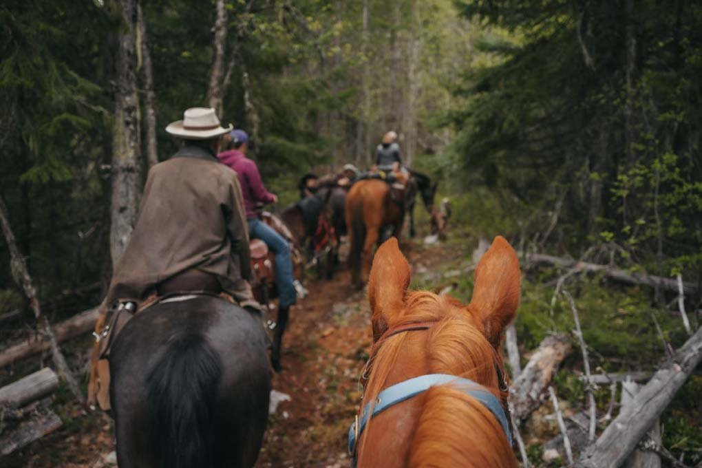 Horse riding around Whistler with Copper Cayuse Outfitters