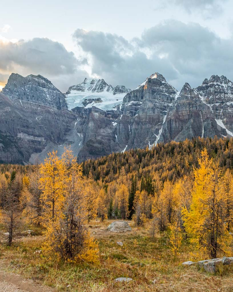 Views on the Larch Valley Trail at sunrise during fall in Banff