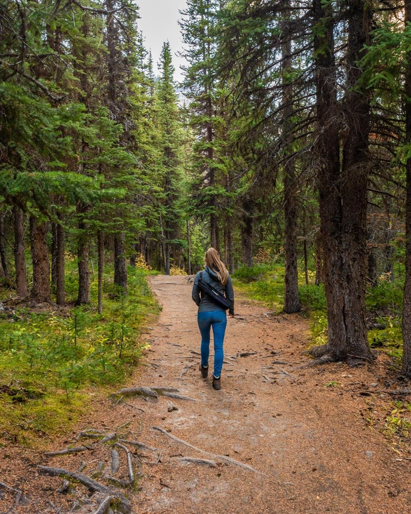 A lasy hiking on the Consolation Lakes Trail