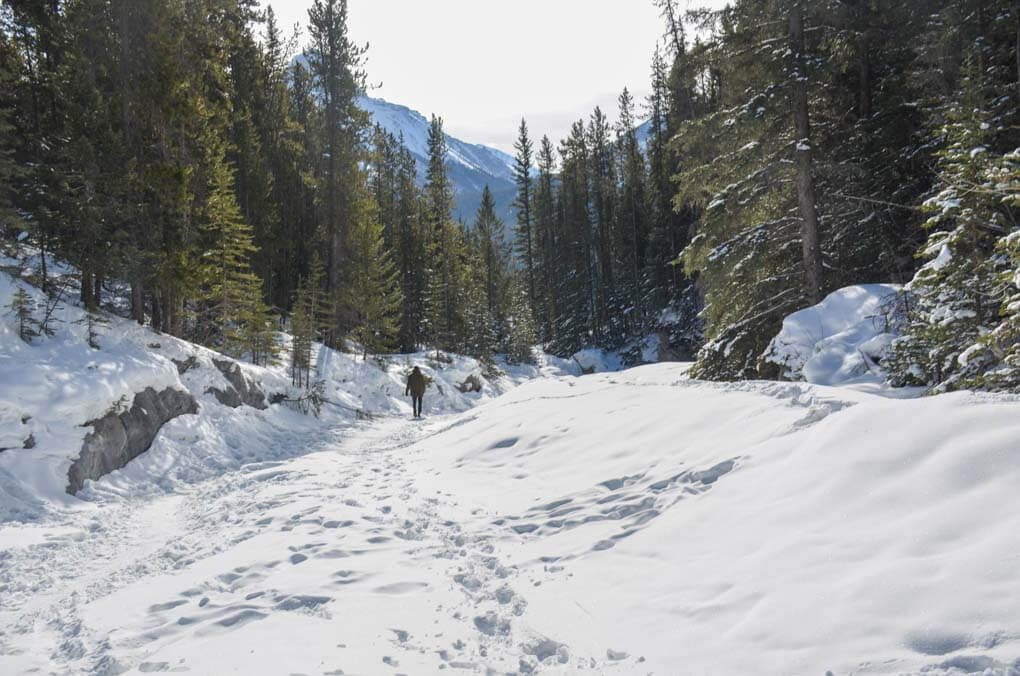 Grotto Canyon in winter
