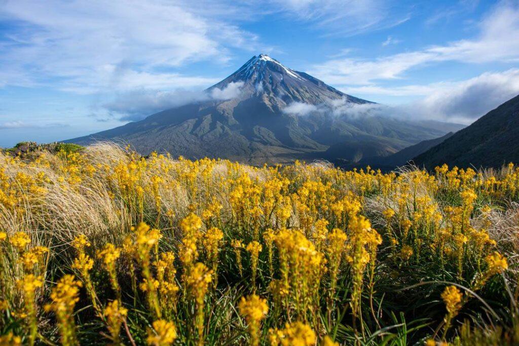 View of Mt Taranaki from near the Pouakiai Hut