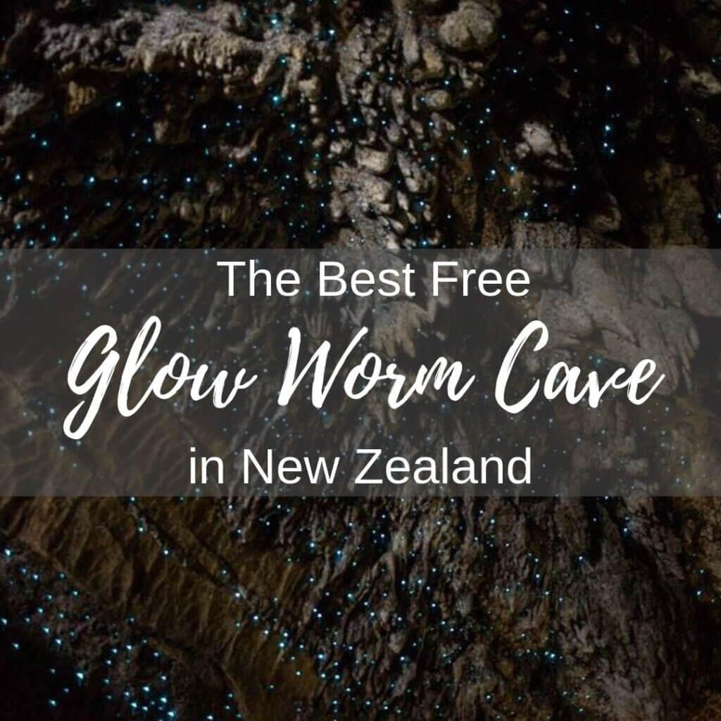 Waipu Caves Glow Worms