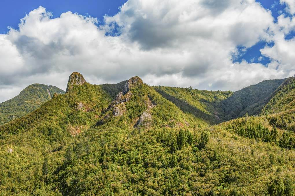 Views from the Pinnacles Hut