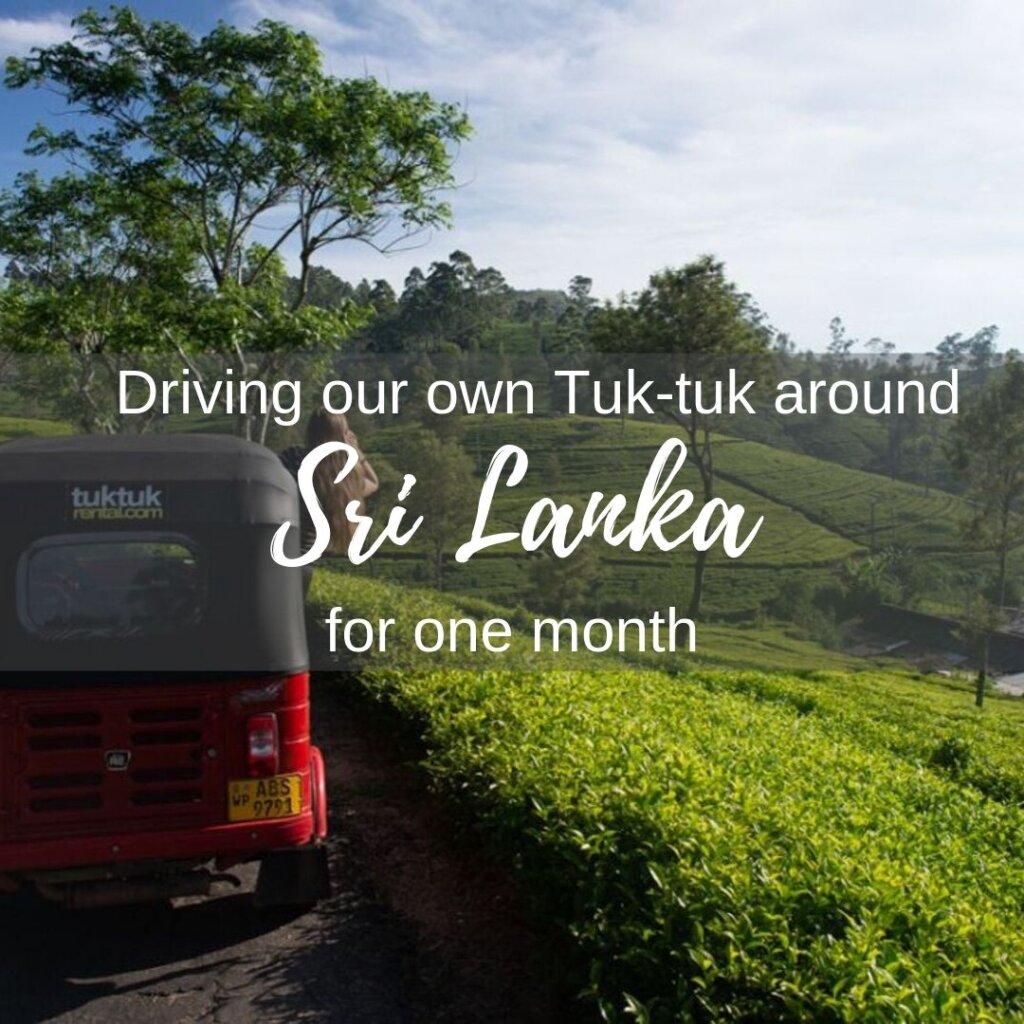 Driving a tuk tuk in Sri Lanka