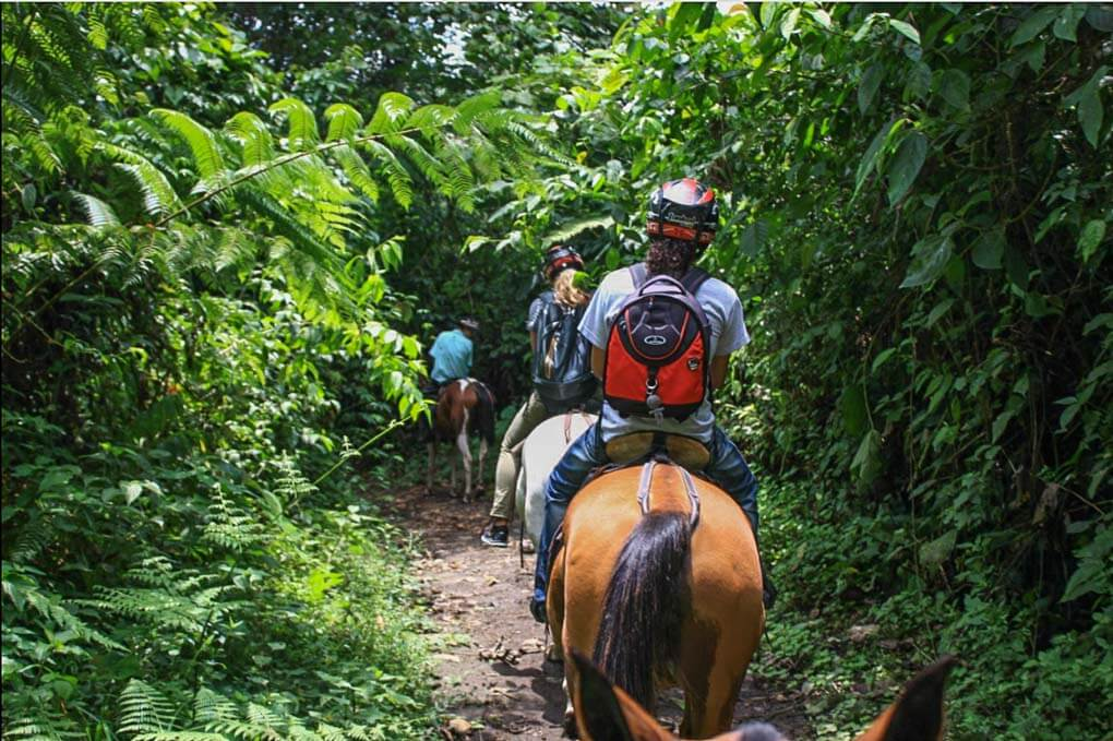 Arenal Wilberth Stables tour through Arenal National Park