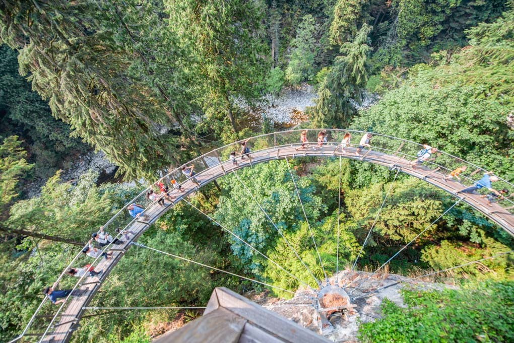 Views of the treetop walk at the Capilano Suspension Bridge in Vancouver, BC