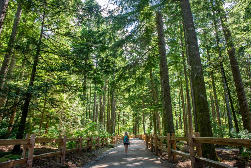 A lady hikes through the forest in Vancouver, BC