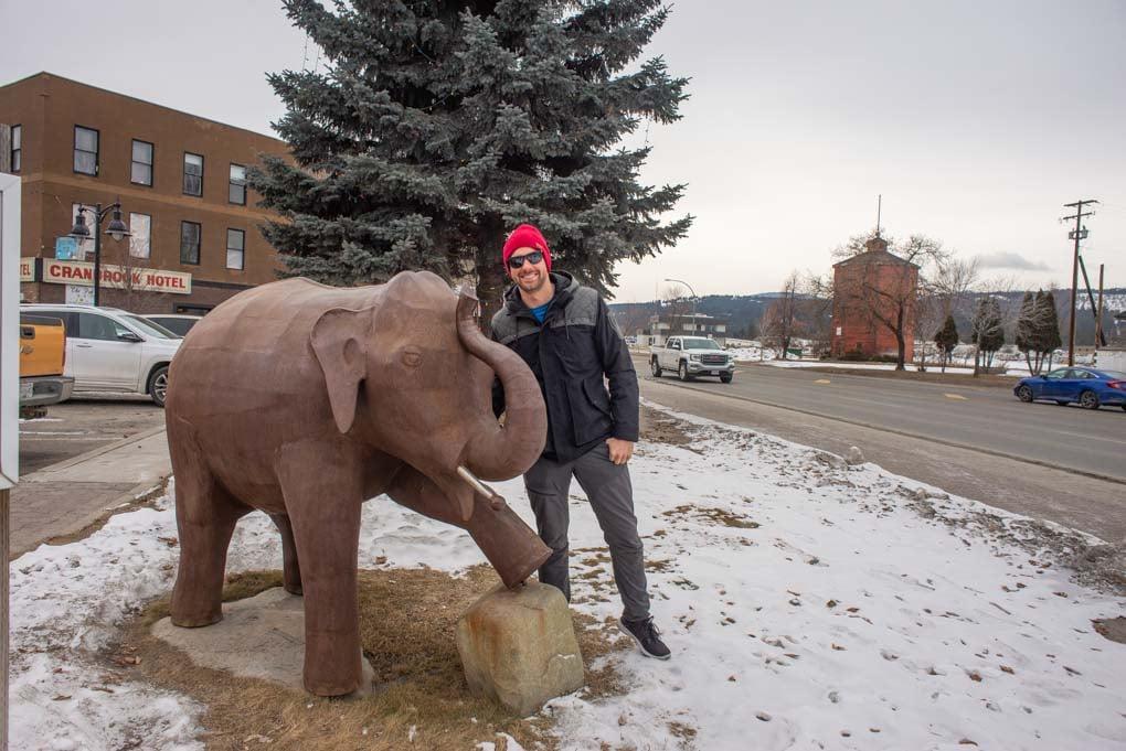 Daniel stands beside the elephant statue in Cranbrook