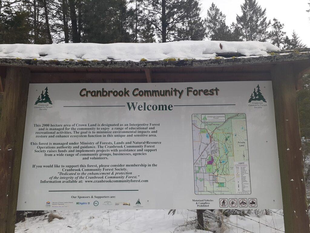 cranbrook-community-forest-map