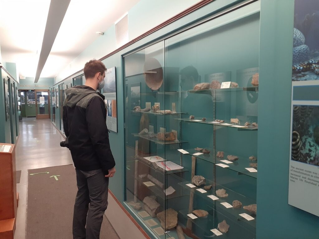 walking in the Cranbrook History Centre
