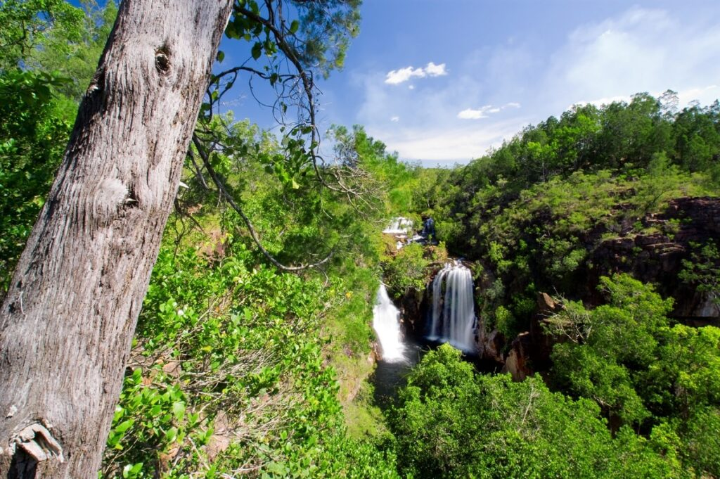 the viewpoint above Florence Falls in Litchfield National Park