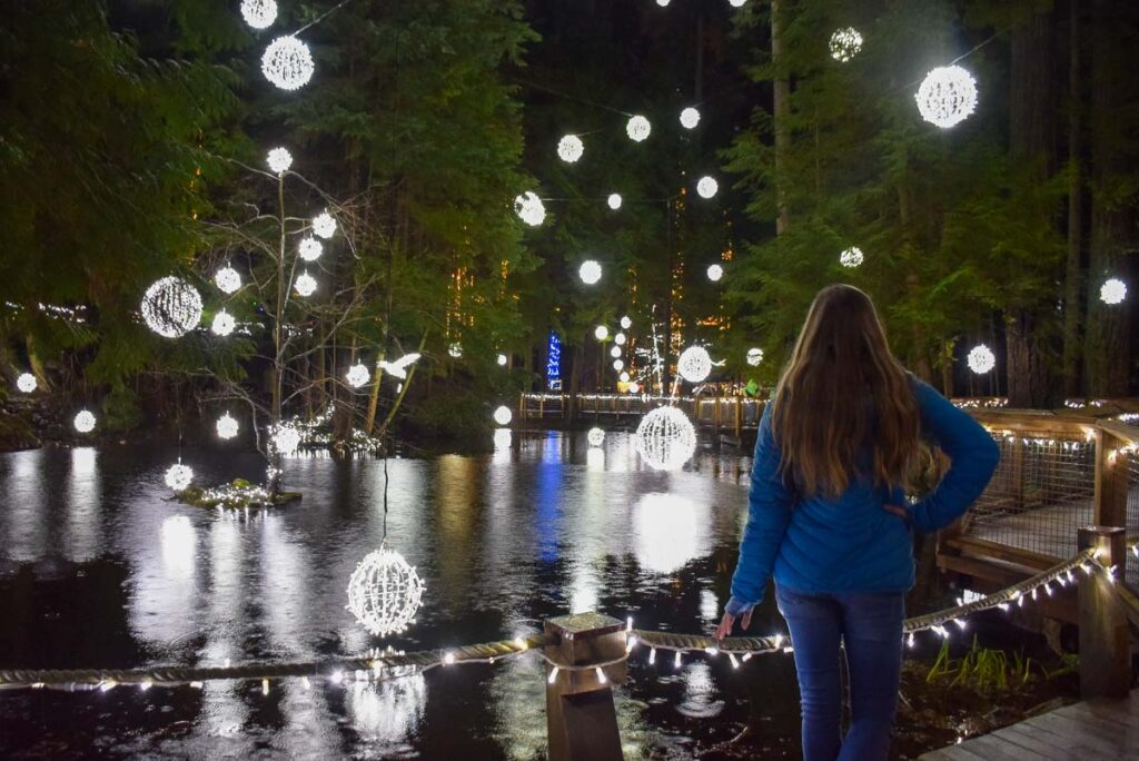 Some of the lights at the Capilano Suspension Bridge in Vancouver during winter