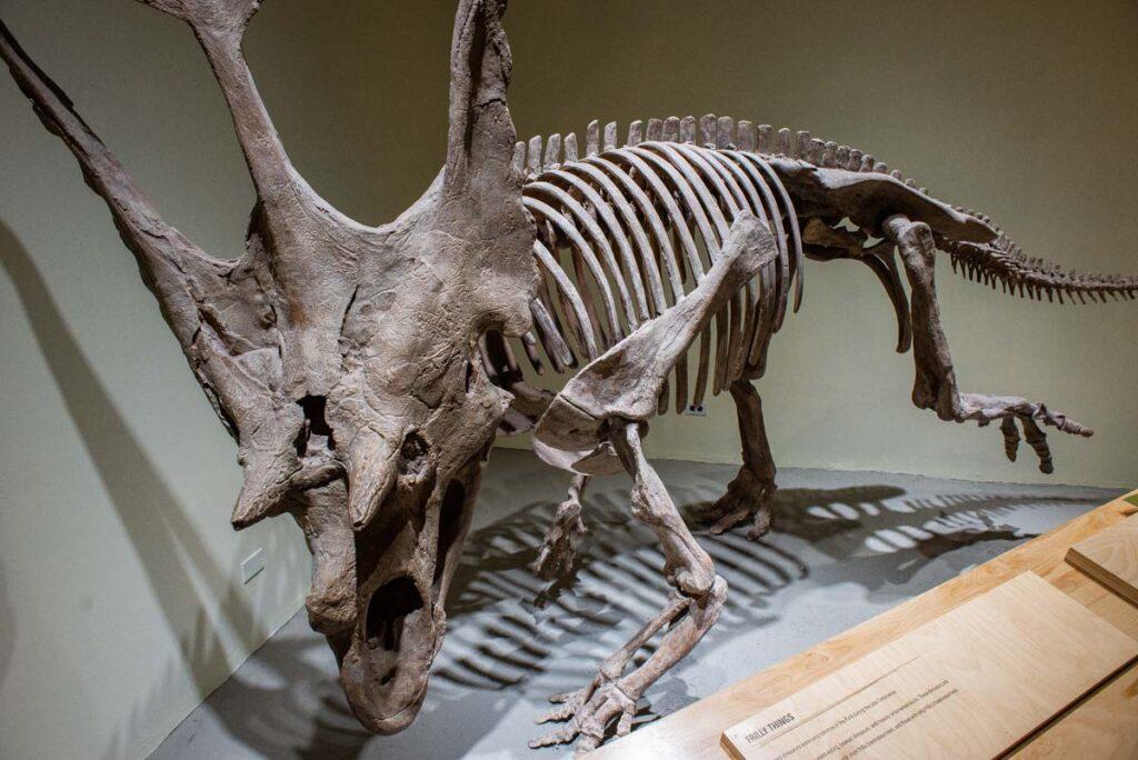 A dinosaur at the visitor center in Dinosaur Provincial Park