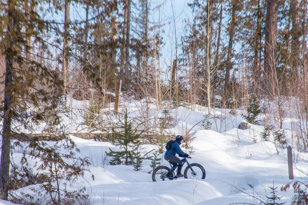 Fat biking in the Montane are in Fernie