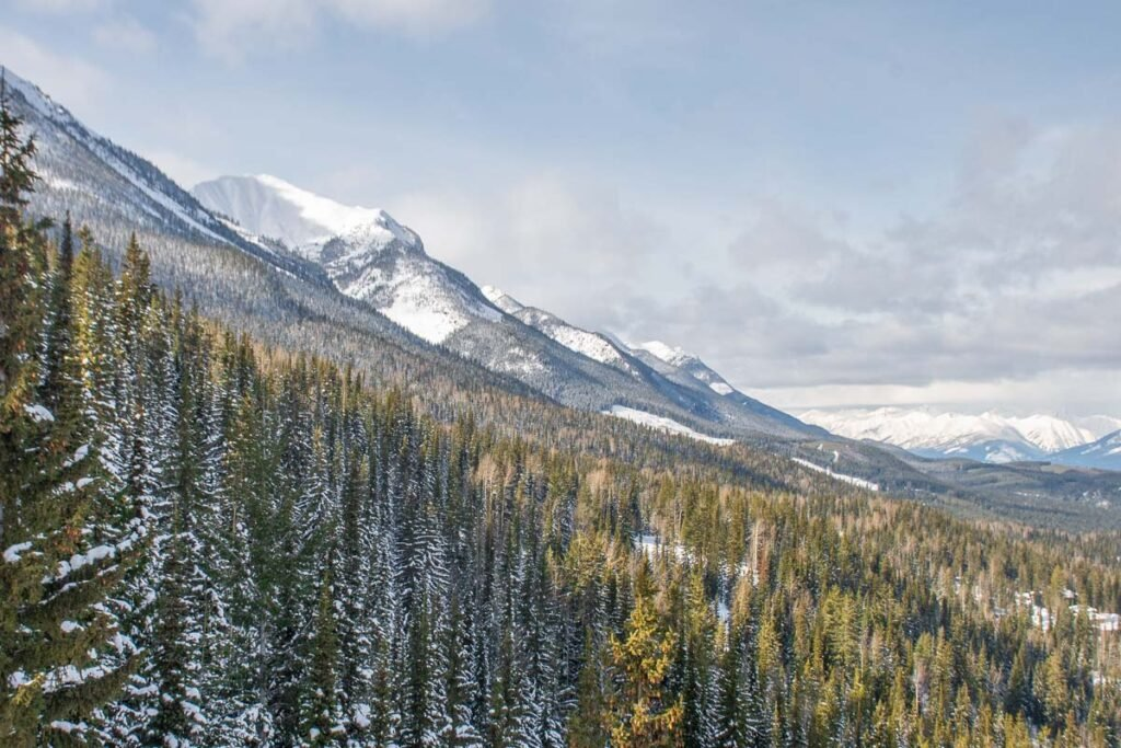 Views from the sighseeing Gondola in Golden, BC