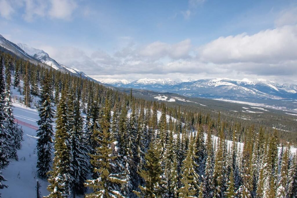Views from the kicking Horse Gondola in Golden, BC