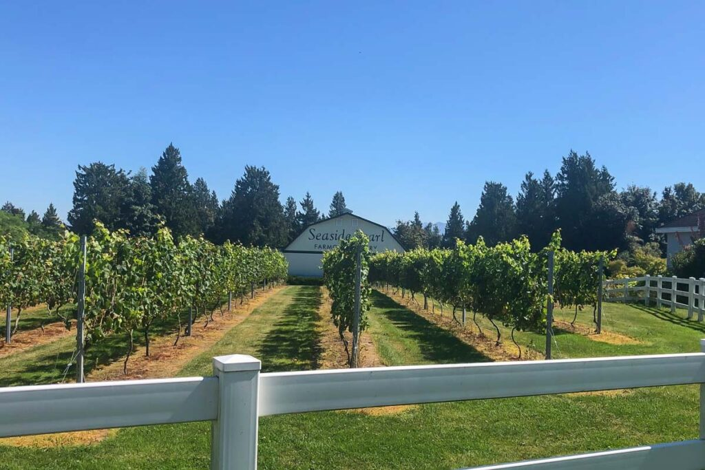 Seaside Pearl Farmgate Winery, Vancouver