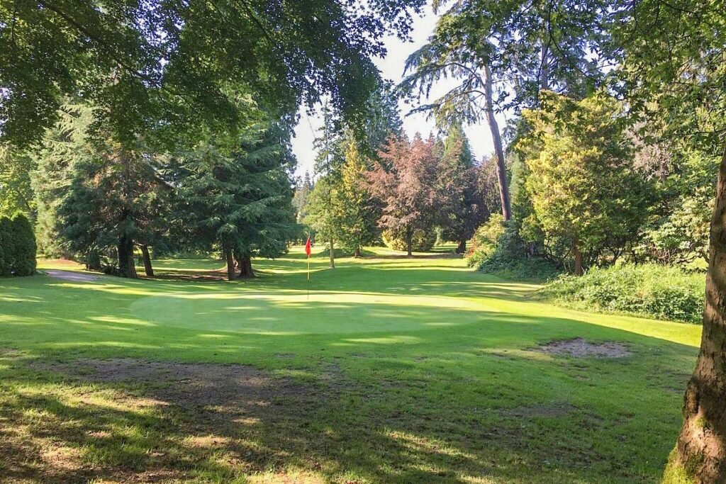 A green at Stanley Park Pitch and Putt