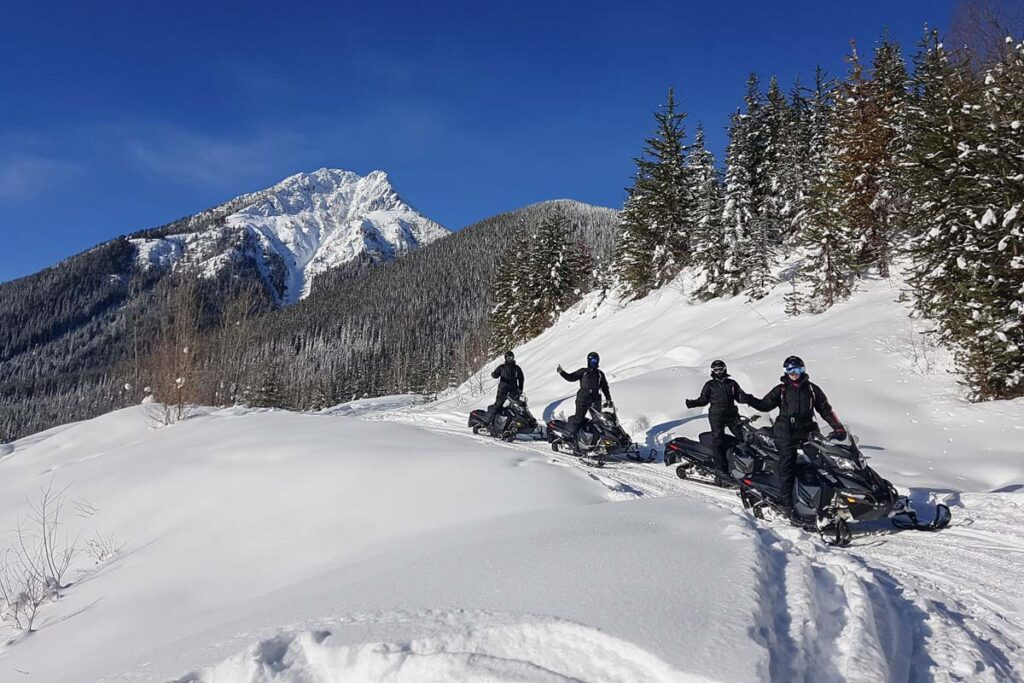 Snowmobiles from White N Wild Golden, BC