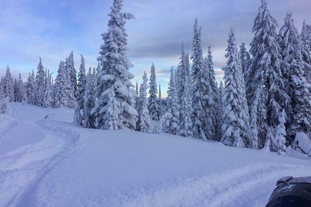 Snowmobiling in Valemount, BC