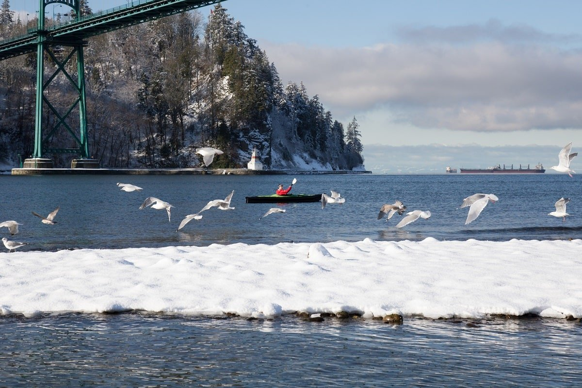 snowy day on the Fraser River in Vancouver in December